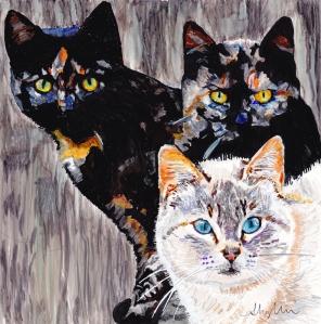 kittens copy