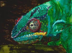Male Panther Chameleon copy 2