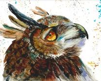 Paul Sherman Owl