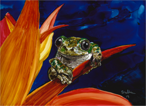Peacock Tree Frog copy