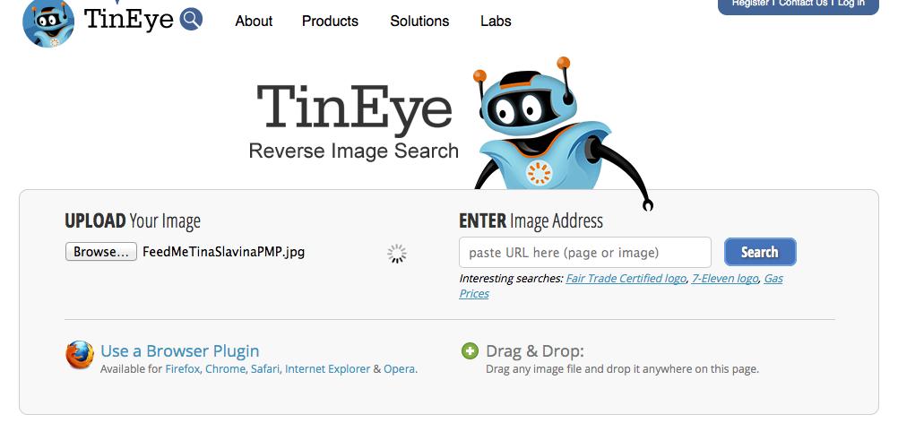 Tineye reverse image