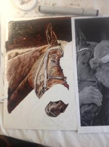 5 Checking horse to photo smlr