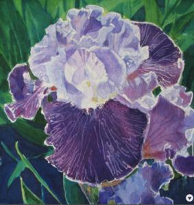 Iris Tennesee Woman