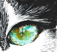 Cat's Eye Based on Roy Davenport's image at PMP