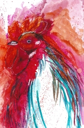 Loose Rooster