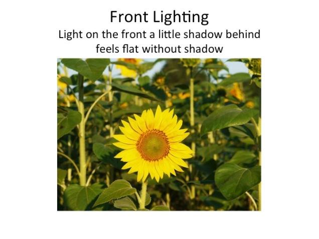 front-lighting